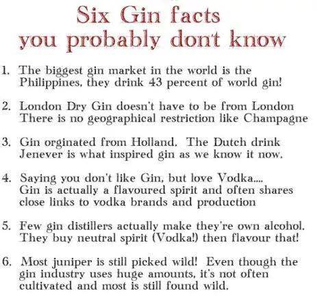 SIX GIN FACTS